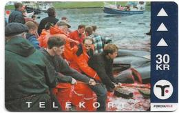 Faroe - Faroese Telecom (Magnetic) - GSM Pilot Whales #3 - 30Kr. - 17.500ex, Used - Faroe Islands