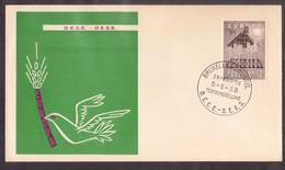 YN245    BELGIQUE. Enveloppe Commémorative De 1958. Journée De L'Organisation Européenne De Coopération Economique OECE - Comunità Europea
