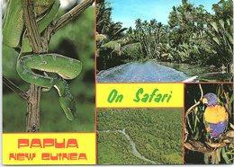 Multi View, On Safari, Western Province, Papua New Guinea - Papua Nuova Guinea