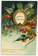 A JOYOUS CHRISTMAS : HORSESHOE, SONGBIRDS, RED BERRIES, VILLAGE SCENE (EMBOSSED) - Christmas