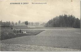 Everbeke St.-Jozef   *  Het Steenberg Veld - Brakel