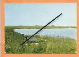 CPM -  7 - Fort Mahon -(Somme) - Une Hutte En Baie De Somme - Fort Mahon