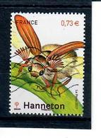 Yt 5149 Hanneton - France