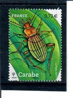 Yt 5150 Carabe - France