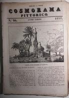 1837 COSMORAMA PITTORICO ANNO TERZO N° 26 EGITTO INGHILTERRA AMAZZONI SAVOIA BASILEA MOSCHENI TOUGRA Fascicolo Di 8 Pagi - Libri, Riviste, Fumetti