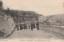 CPA 84  SAULT DE VAUCLUSE  LES BEAUME PROMENADE D'HIVER ANIMEE - France