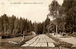 88. VOSGES - (GERARDMER) En Lorraine. Blanchissage De Toiles Sur Le Pré. - France