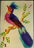 Italy, Postcard, Musical, Exotic Bird, Rotalcolor Milano, Unused - A Systèmes