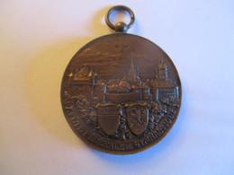 Suisse: Médaille Tir Fédéral, Lausanne 1909 - Jetons & Médailles