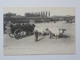 1900 CP Arras Attelage Boeufs Charrette Avec Tonneaux Vin? Vue Sur Le Port N° 72 - Arras