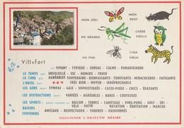 CPSM  48  VILLEFORT FANTAISIE PETITE PHOTO - Villefort