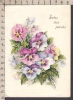 93626GF/ FLEURS, Illustration, Pensées - Bloemen