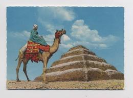 Nécropole De Saqqarah - Sakkara - Egypte - Pyramide De Djéser - The Pyramid Of Djoser - Animée - Egypte