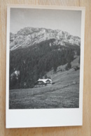 Puchberg Schneeberg Alpengasthof Bergheimat - Unclassified