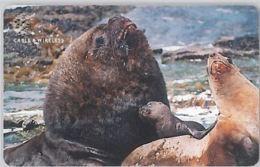 PHONE CARD - FALKLAND (E44.30.7 - Falklandeilanden