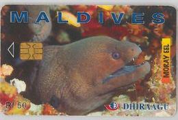 PHONE CARD - MALDIVE (E44.33.8 - Maldiven