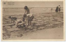 Heist - Heyst S/Mer - La Pêche Des Petits - Het Krabbenvangen Schijnt Ingewikkeld - Heist