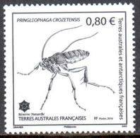 TAAF - 2016 - Insecte De Crozet : Pringleophaga Crozetensis ** - French Southern And Antarctic Territories (TAAF)