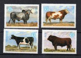 ZAMBIE - ZAMBIA - COWS - VACHES - ANIMAUX DE LA FERME - FARM ANIMALS - FAO - 1987 - - Zambie (1965-...)