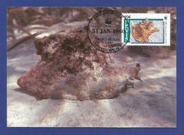 St.Kitts And Nevis 1990 , Queen Conch / Die Fechterschnecke - WWF Official Maximum Card - 31 Jan.90 - St.Kitts-et-Nevis ( 1983-...)
