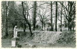 33 - BB54193CPSM - SAINT MORILLON - Domaine De Bethanie - Le Parc - Parfait état - GIRONDE - France