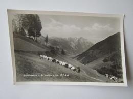 Schafweide - St. Anton Am Arlberg 1304m - Theodor Pies 108 - St. Anton Am Arlberg