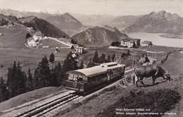 Switzerland, Suisse, Rigi Staffel, Blick Gegen Berneralpen Und Pilatus (pk56994) - Suisse