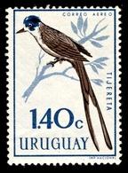 1962 Uruguay - Uruguay