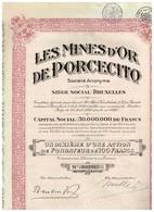Titre Ancien - Les Mines D'Or De Porcecito Société Anonyme - Titre De 1928 - Mines