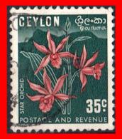 CEYLON ( SRI LANKA - ASIA DEL SUR )  SELLO 1951-54 MOTIVOS NACIONALES. - Sri Lanka (Ceilán) (1948-...)