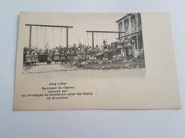 40327   Coq    Gymnase Du  Casino - - De Haan