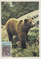 Carte  Maximum  1er   Jour   ANDORRE   Protection  De  La  Nature  :  L' Ours    1971 - Maximumkarten (MC)
