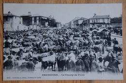 79 : Bressuire - Le Champ De Foire - Animée : Belle Animation - Marchands De Bestiaux - Vaches / Boeufs - (n°14723) - Bressuire