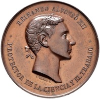 ESPAÑA. ALFONSO XII. MEDALLA EXPOSICIÓN DE GUADALAJARA. 1.876. ESPAGNE. SPAIN MEDAL - Royaux/De Noblesse