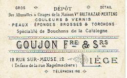 Carte De Visite Commerciale LIEGE 12 Rue Sur-Meuse - GOUJON Fre & Srs - Allumettes, Cirages, Couleurs, Vernis, Peaux.... - Cartes De Visite