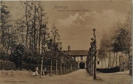 Scherpenheuvel - Montaigu // Chemin Vars Ancienne Abbaye 1911 - Scherpenheuvel-Zichem