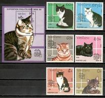 Laos 1989 Lao / Cats MNH Gatos Katzen Chats / Cu11506  C5-16 - Gatos Domésticos