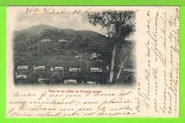 VISTA DE UN CAFETAL EN HONGOLO SONGO - Tarjeta Escrita En 1902 -  Fotos Anverso Y Reverso - Cuba