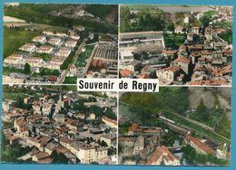 En Avion Au-dessus De REGNY - Usines Et Cités JALLA Le Centre Et Groupe Scolaire Vue Générale Le Vieux Pont Sur Le Rhins - Francia