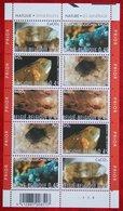 Complete Vel Mineralen Minerals Mineralien OBC N° 3174-3178 (Mi 3227-3231) 2003 POSTFRIS MNH ** BELGIE BELGIEN / BELGIUM - Belgien