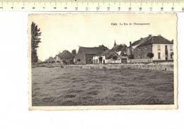 49910 - CIPLY LA RUE DE L ENSEIGNEMENT - Mons