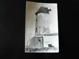 ILE DE NOIRMOUTIER     L'HERBAUDIERE   LE MOULIN DE PINEREAU - Noirmoutier