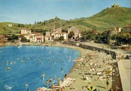 D66  COLLIOURE  La Plage Des Faubourgs - Au Fond L'ancien Couvent Des Dominicains Et Le Fort St Elme - Collioure