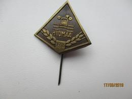 TRACTOR , HIIUMAA 1976 , PIN BADGE ,0 - Transportation