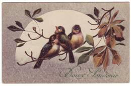 Carte Postale DOUX SOUVENIR Avec Oiseaux. - Souvenir De...