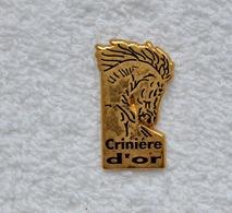 Pin's Cheval Crinière D'or - Dieren
