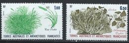 TAAF YT 125-126 XX / MNH - Terres Australes Et Antarctiques Françaises (TAAF)