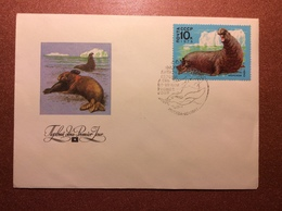 Old USSR Special Cancellation Postal Cover 1978 Mail Stamp. Premier Jour. Flora Of USSR. Walrus. Sea Elephant. Kolganov - 1923-1991 USSR