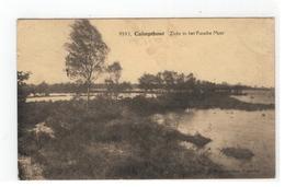 9593 Calmpthout  Zicht In Het Putsche Moer Photo Hoelen Cappellen - Kalmthout