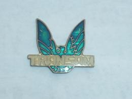 Pin's AIGLE TRANSAM - Badges
